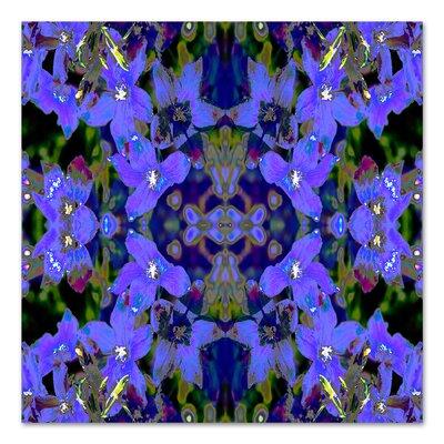 Delphinium X2 by Rose Anne Colavito Graphic Art Size: 18