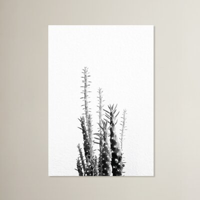 Beckett Cactus Photographic Print Size: 10