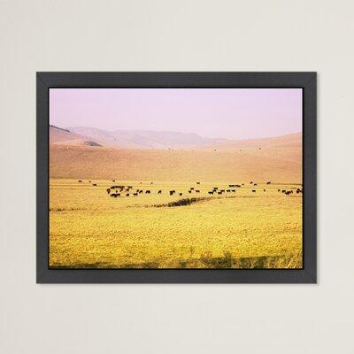 Coastal Farm Framed Photographic Print