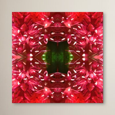 Celosia by Rose Anne Colavito Graphic Art Size: 10
