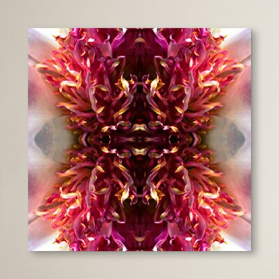 Peony Frizzle by Rose Anne Colavito Graphic Art Size: 10