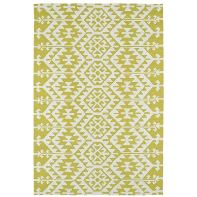 Handmade Wasabi/Ivory Indoor/Outdoor Area Rug Rug Size: Rectangle 2 x 3