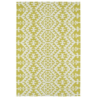 Handmade Wasabi/Ivory Indoor/Outdoor Area Rug Rug Size: Rectangle 8 x 10