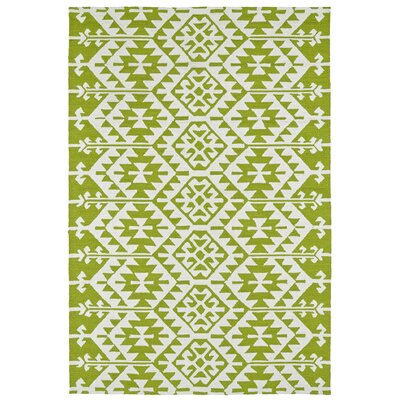Lime Green/Ivory Indoor/Outdoor Area Rug Rug Size: Rectangle 9 x 12