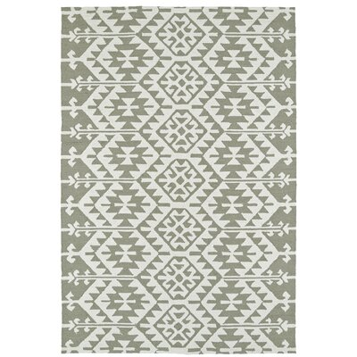 Handmade Taupe/Ivory Indoor/Outdoor Area Rug Rug Size: Rectangle 5 x 76
