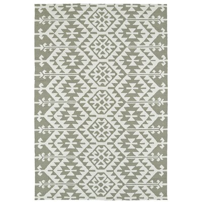 Handmade Taupe/Ivory Indoor/Outdoor Area Rug Rug Size: Rectangle 9 x 12