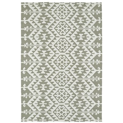 Handmade Taupe/Ivory Indoor/Outdoor Area Rug Rug Size: Rectangle 4 x 6