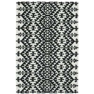 Handmade Black / Ivory Indoor / Outdoor Area Rug Rug Size: 2 x 3