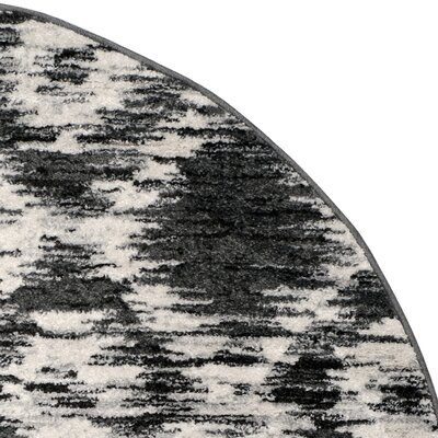 Schacher Charcoal/Ivory Area Rug Rug Size: Round 6