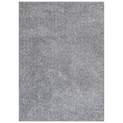 Bouvier Hand-Woven Gray Area Rug Rug Size: 76 x 96