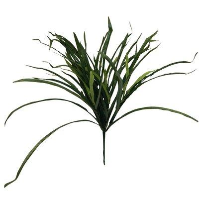 Decorative Grass Bush