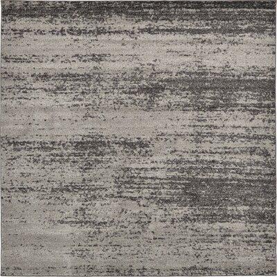 Saffold Gray Area Rug Rug Size: Square 8
