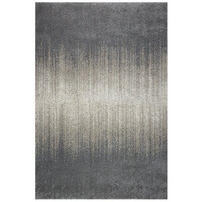 Saldana Gray Area Rug Rug Size: Rectangle 710 x 1010