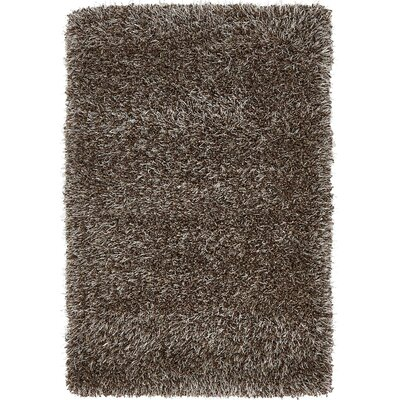 Salguero Brown Area Rug Rug Size: 2 x 3