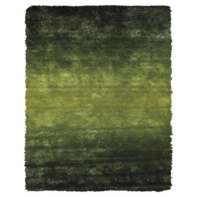 Sapienza Dark Green Area Rug Rug Size: 49 x 76