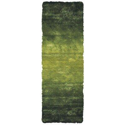 Sapienza Dark Green Area Rug Rug Size: Runner 26 x 6