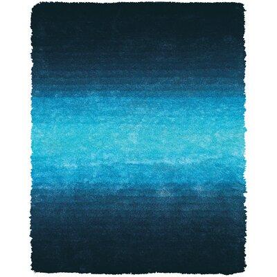 Sapienza Light Blue Area Rug Rug Size: 2' x 3'4