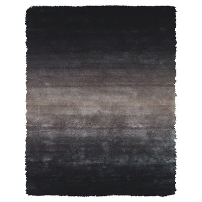 Sapienza Black Area Rug Rug Size: Rectangle 49 x 76