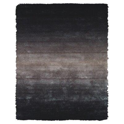 Sapienza Black Area Rug Rug Size: 36 x 56