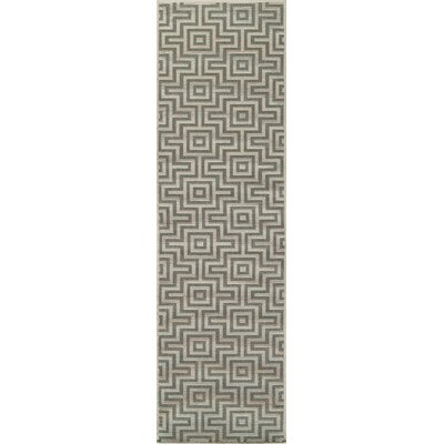 Wexler Sage Indoor/Outdoor Area Rug Rug Size: Runner 23 x 76