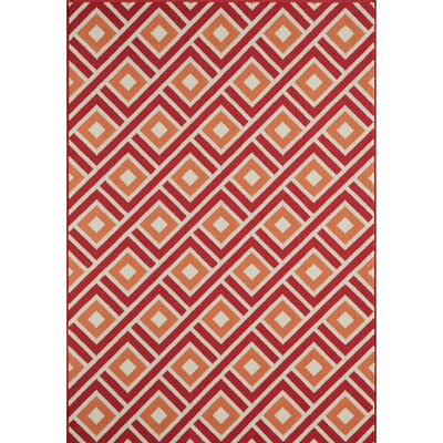 Rahul Hand-Woven Indoor/Outdoor Area Rug Rug Size: 53 x 76