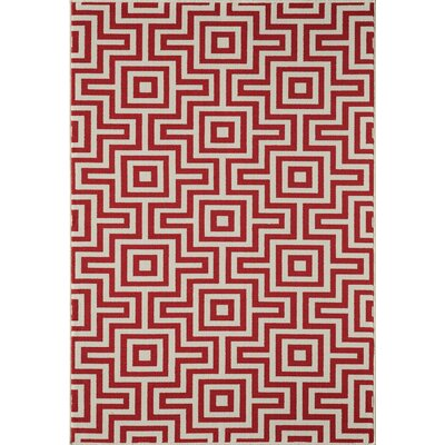 Wexler Hand-Woven Red Indoor/Outdoor Area Rug Rug Size: 53 x 76