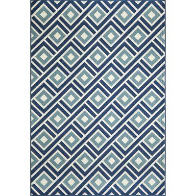 Wexler Hand-Woven Blue Indoor/Outdoor Area Rug Rug Size: 67 x 96