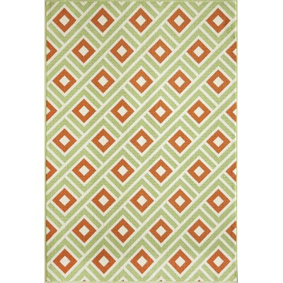 Rahul Hand-Woven Green/Rust Indoor/Outdoor Area Rug Rug Size: 67 x 96