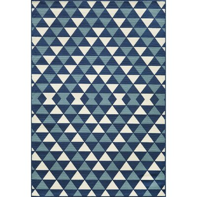 Wexler Hand-Woven Blue Indoor/Outdoor Area Rug Rug Size: 7'10