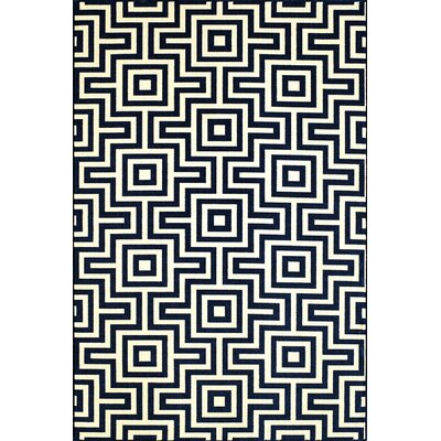 Rahul Hand-Woven Blue/Beige Indoor/Outdoor Area Rug Rug Size: 67 x 96