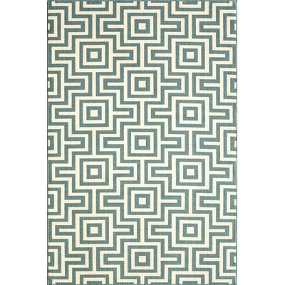Rahul Hand-Woven Blue Indoor/Outdoor Area Rug V Rug Size: 53 x 76