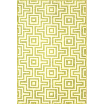 Rahul Hand-Woven Green Indoor/Outdoor Area Rug Rug Size: 53 x 76