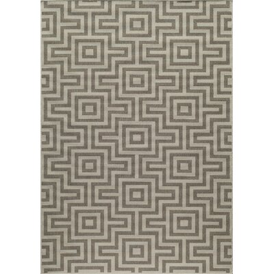 Wexler Hand-Woven Taupe Area Rug Rug Size: 53 x 76