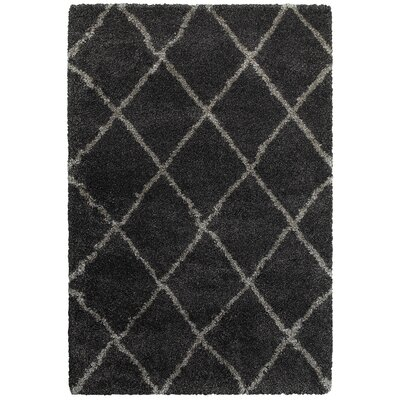 Sayer Charcoal/Gray Area Rug Size: 5'3