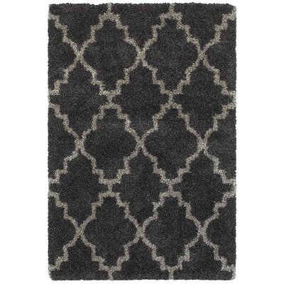 Sayer Charcoal/Gray Area Rug Size: Rectangle 53 x 76