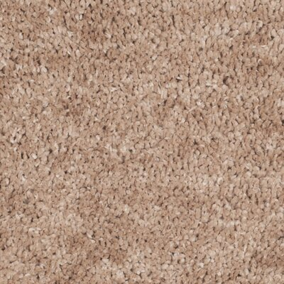 Sparrow Shag Beige Solid Area Rug Rug Size: Square 6