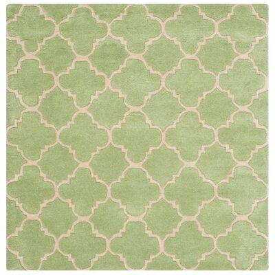 Wilkin Green Area Rug Rug Size: Square 5