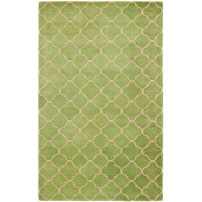 Wilkin Green Area Rug Rug Size: 5 x 8