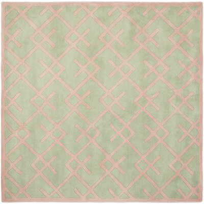 Wilkin Green Rug Rug Size: Square 7