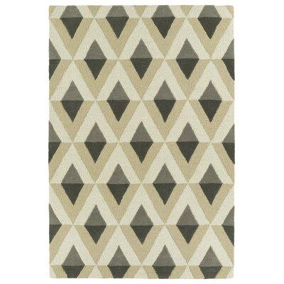 Serpens Handmade Gray Area Rug Rug Size: 5 x 7