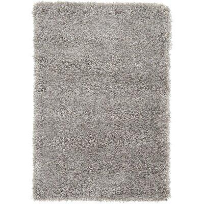 Shriver Gray Area Rug Rug Size: 22 x 3