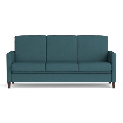 Sevier Futon Sleeper Sofa Color: Caribbean Blue