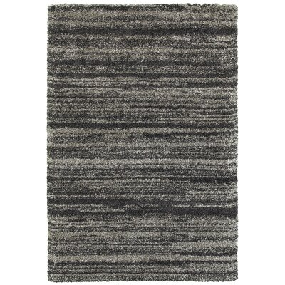 Barnhart Gray/Charcoal Area Rug Size: Rectangle 53 x 76
