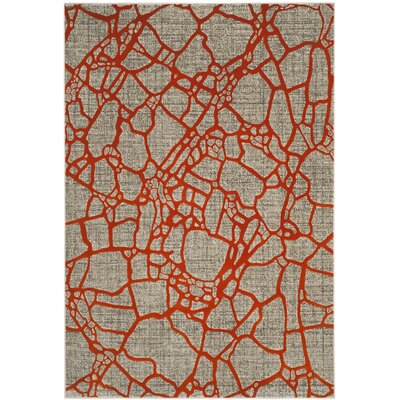Sevastopol Gray/Orange Area Rug Rug Size: 82 x 11