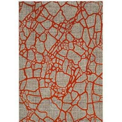 Sevastopol Gray/Orange Area Rug Rug Size: 6 x 9