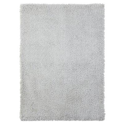 Ali Teddy Shag Silver Area Rug Rug Size: 5 x 7