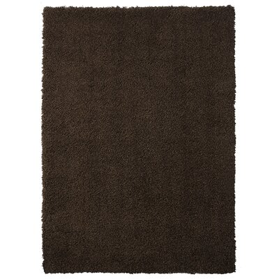 Ali Teddy Shag Chocolate Area Rug Rug Size: 26 x 310