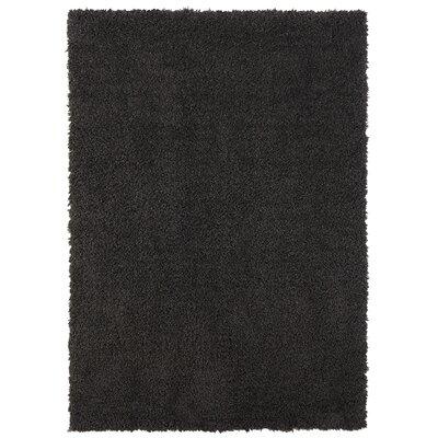 Ali Teddy Shag Charcoal Area Rug Rug Size: 8 x 10