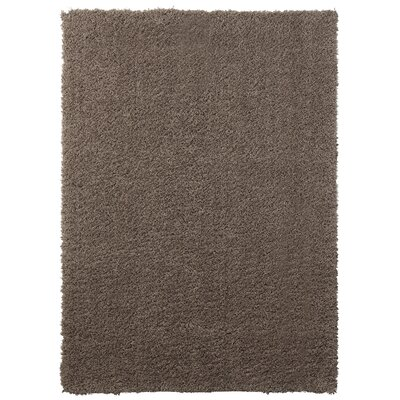 Ali Teddy Shag Brown Area Rug Rug Size: 26 x 310