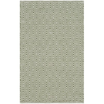 Shevchenko Place Hand-Woven Ivory/Green Area Rug Rug Size: Rectangle 4 x 6